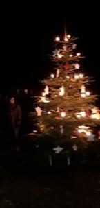 Weihnachtsbaum 2018_2